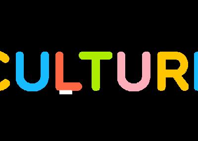 Data Culture Project